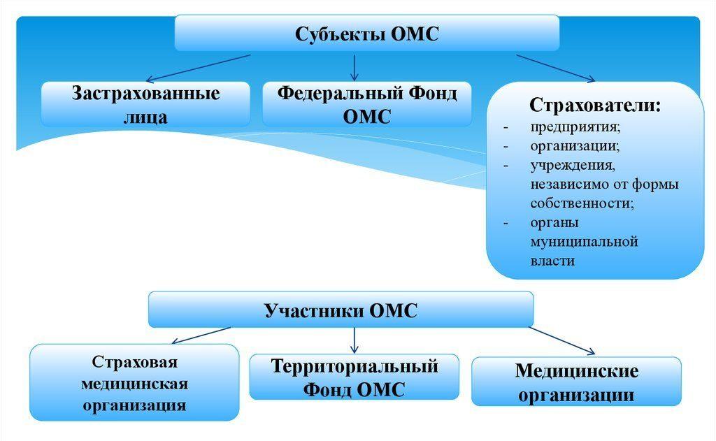 участники и субъекты омс