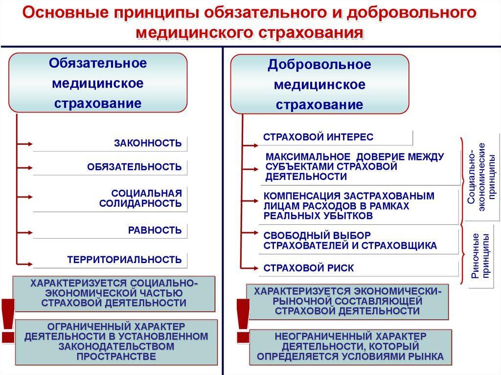 принципы полисов омс и дмс для иностранных граждан