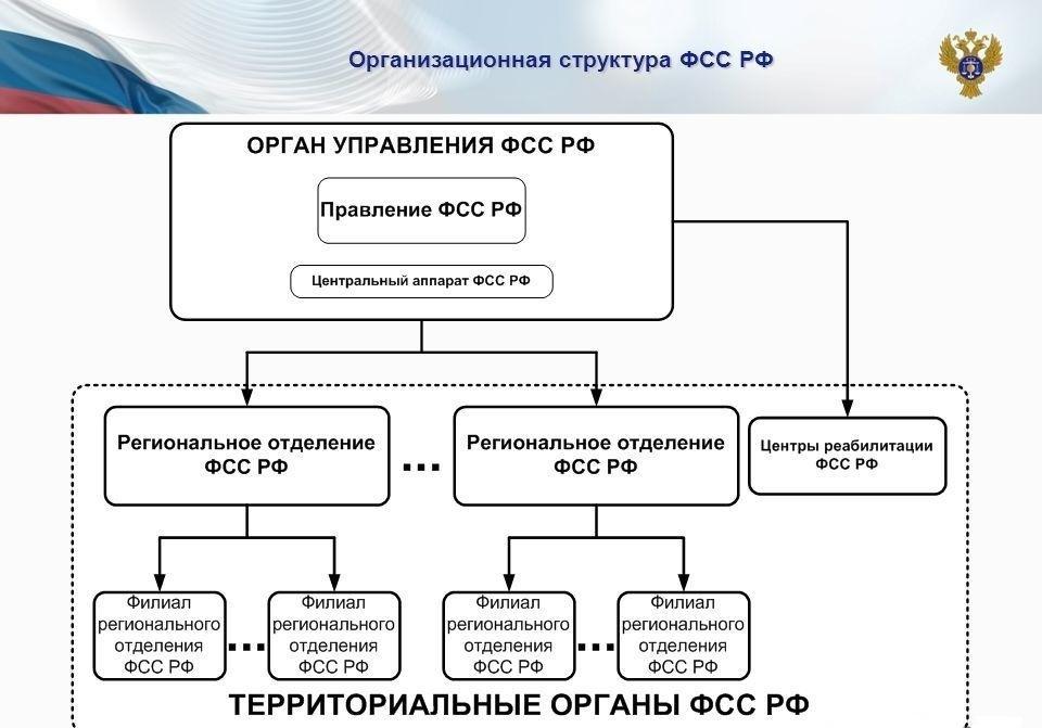 структура фсс