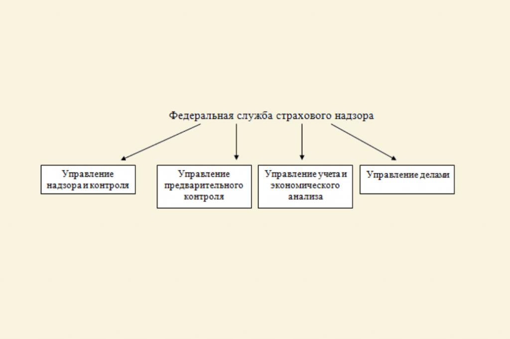 Структура ФССН