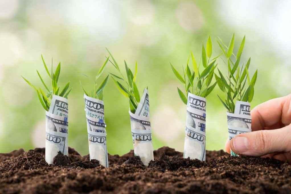 Виды средств обязательного социального страхования