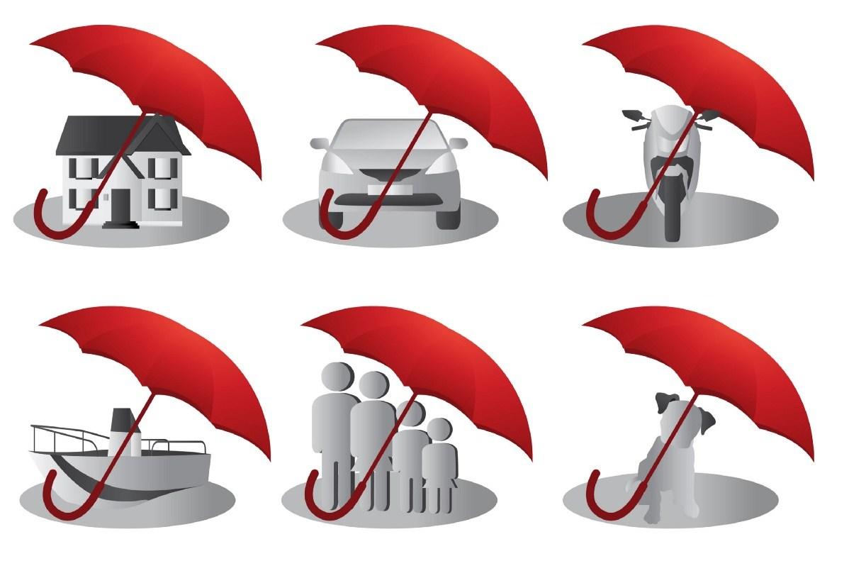 основные виды страхования в компании СМП-Страхование