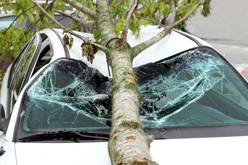 страховой случай Росгосстрах в результате стихийного бедствия