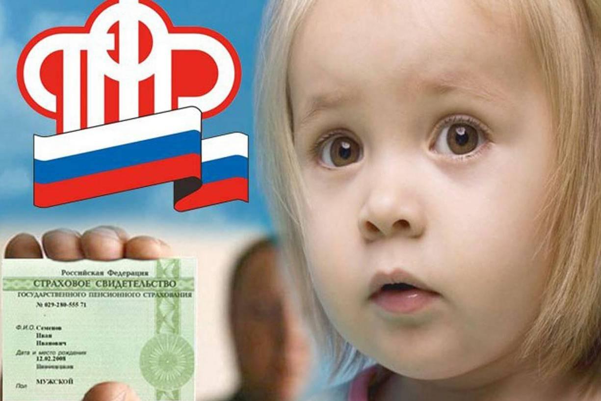 какие организации выдают снилс для ребенка, пенсионный фонд по месту прописки